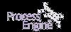 ProcessEngine